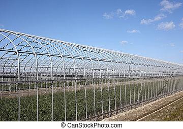 建物, 農業