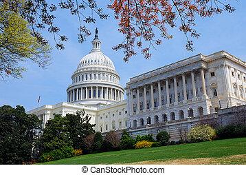 建物, dc., 国会議事堂, ワシントン, 木, 丘