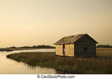 建物, marsh., 湿地
