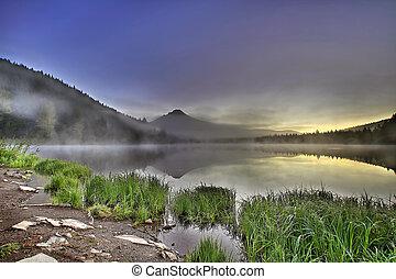 建立, 湖, 敞篷, 有霧, trillium, 日出