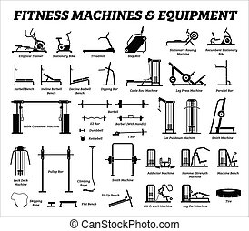 建築物, 集合, cardio, equipments, 機器, gym., 健身, 肌肉