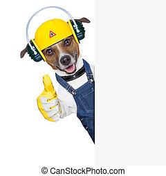 建設 中, 犬
