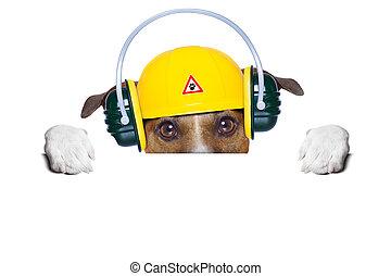 建設, 犬, 下に