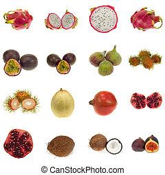 异國情調的水果, 彙整