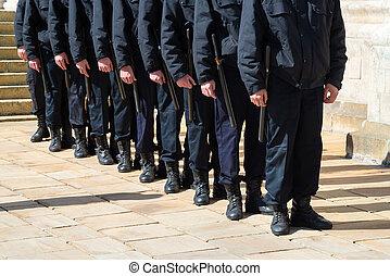 式, パレード, ショー, 待つこと, 監視, 立ちなさい, セキュリティー, 横列