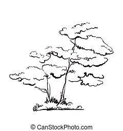 引かれる, 木。, 手