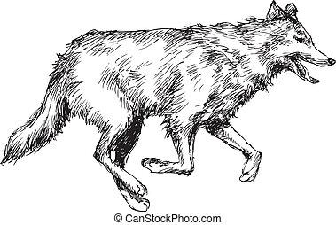 引かれる, 狼, 手