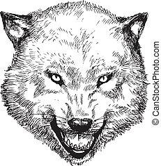引かれる, 頭, 狼, 手