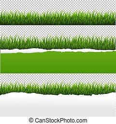 引き裂かれた, ペーパー, 緑の背景, 草, 透明
