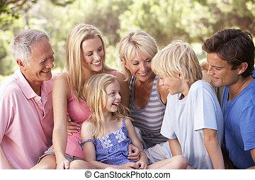 弛緩, 家族, 公園, 祖父母, 子供, 親