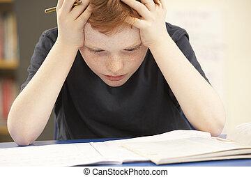 強調された, 男生徒, 勉強, 中に, 教室