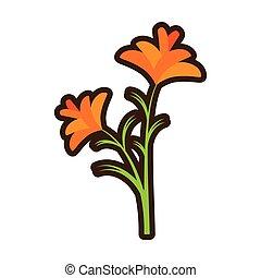 彈跳花, 自然, 卡通, 小蒼蘭屬植物
