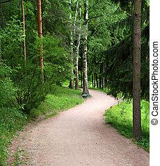 彎曲的路, 在公園