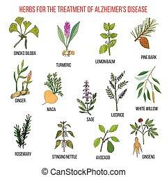 彙整, ......的, 藥草, 為, alzheimer, 疾病