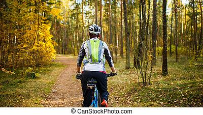 形象, 从, 往回, 在中, 女孩, 在中, 钢盔, 在上, 自行车