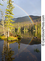 彩虹, 在上方, 荒野, 湖