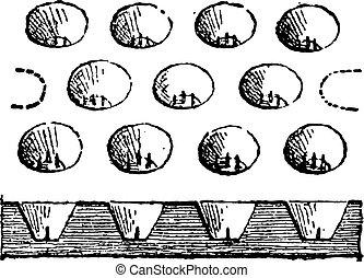 彫版, トレー, 卵, 型