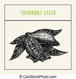 彫版, 型, 葉, 木のフルーツ, ブランチ, カカオ