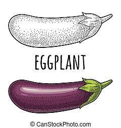 彫版, 型, 隔離された, イラスト, ベクトル, 黒い背景, 白, eggplant.