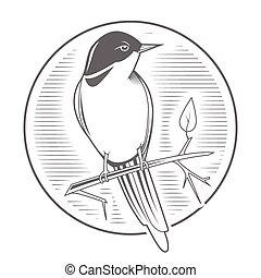 彫版, 鳥, ナイチンゲール, 紋章, ベクトル
