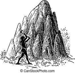 彫版, termitaria, 型, シロアリ, termitoidae, 小山, ∥あるいは∥