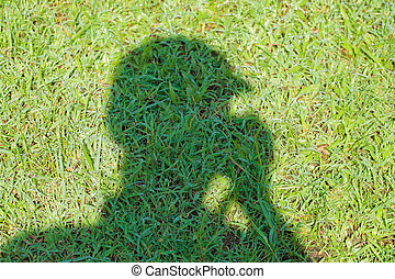 影, 中に, ∥, grass.