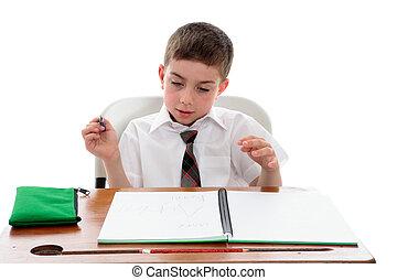 彼の, 検査, 学校の 仕事, 学生