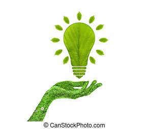 彼の, 葉, ライト, 手, 緑, 電球