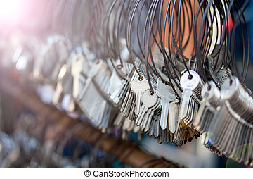 很多, 束, ......的, keychain