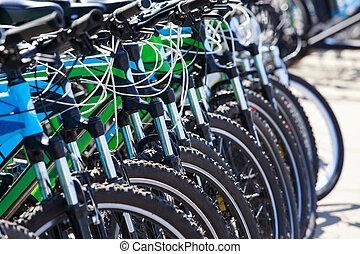 很多, bicycles, 站, 在一行中