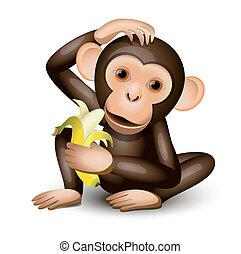 很少, 猴子