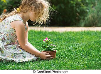 很少, 白膚金髮, 女孩, 藏品, 年輕, 花, 植物, 在, 交給在上, 綠色的背景