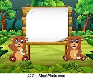很少, 空間, 木制, 自然, 二, 熊, 板, 空白, 嬰孩, 看法