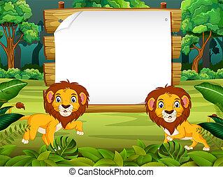 很少, 空間, 木制, 自然, 獅子, 板, 空白, 看法