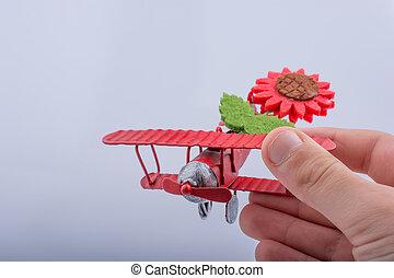 很少, 金屬, 模型飛機, 由于, 花, 在, 孩子, 手