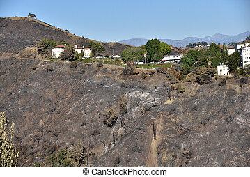 後で, 山火事, 地位, 構造, getty