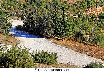 徘徊, 岩石, 路, 在, the, 荒野, ......的, 以色列