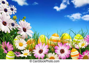復活節蛋, 花, 以及, the, 藍色的天空