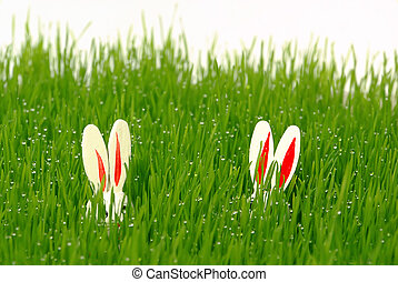 復活節bunny, 10