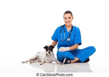 心づかい, 獣医, 医者, ペット, モデル, 犬