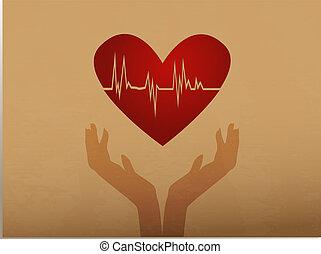 心臓の鼓動