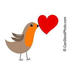 心, ロビン, 鳥