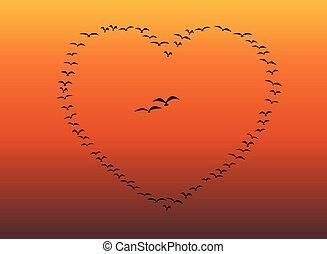 心, 一団, 飛行, 鳥