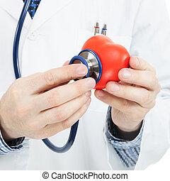 心, 彼の, 比率, 医者, 医学, -, 手, 1, 権利, 聴診器, 保有物, おもちゃ, イメージ, 左