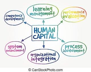 心, 概念, 地図, 作戦, 人的資本