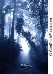 忘れられた, 道, 森林, 人形, 霧が濃い
