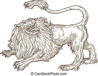 怒る, の上, 見る, ライオン, 吠え声, 側, 見られた