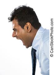 怒る, アジアのビジネス, 人, shouting.