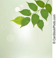 性质, leaves., 矢量, 绿色的背景, illustrtion.