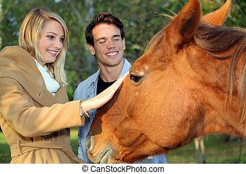 恋人, なでること, 馬